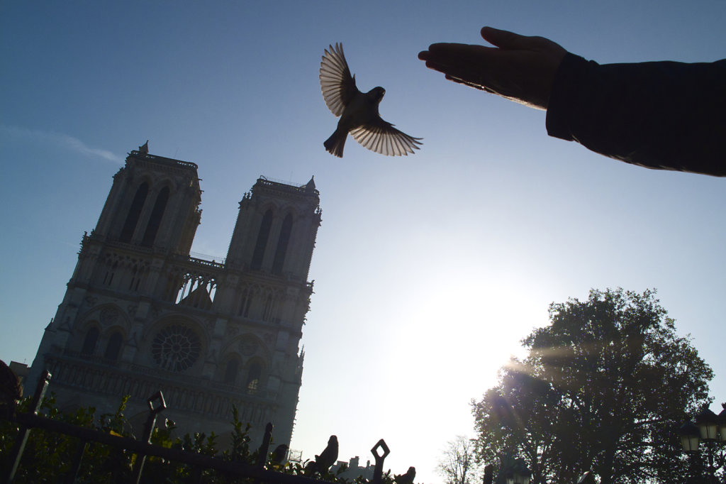 Piaf à Notre-Dame