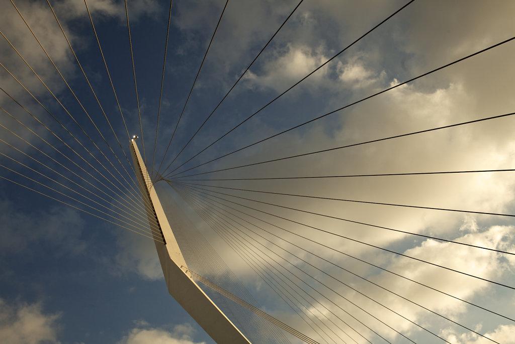 Pont de cordes de Calatrava